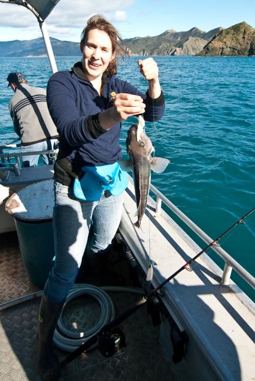 Seabird Charters