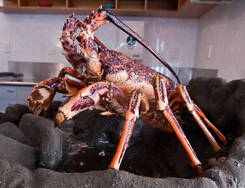 Guyton's Seafood