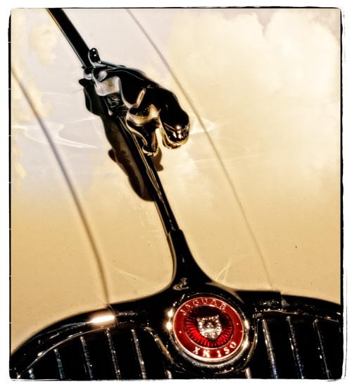 classic cars--8