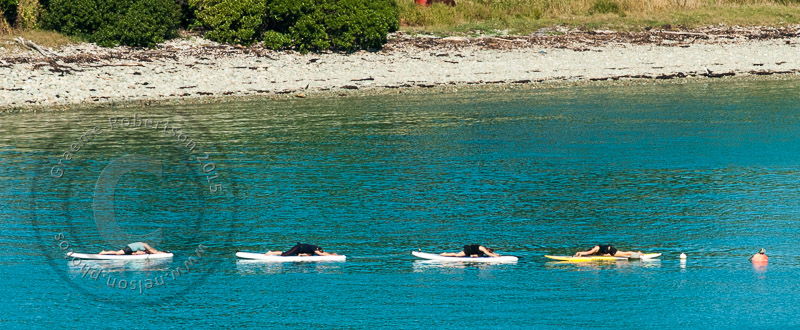 wpid4908-Paddle-board-yoga-3395.JPG