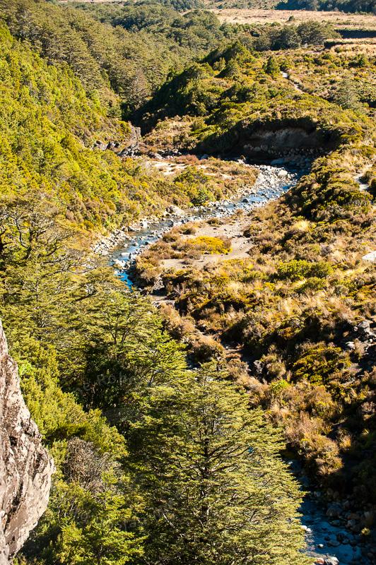 wpid5087-Tongariro-4625.jpg