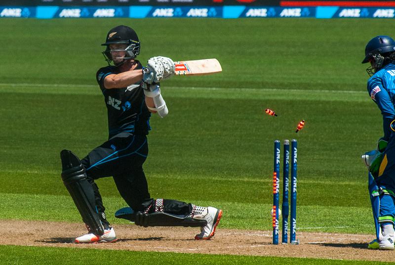 wpid5899-cricket-2.jpg