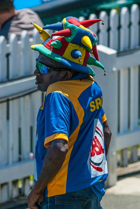 wpid5907-cricket-6.jpg